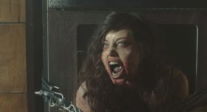 Life After Beth Photo