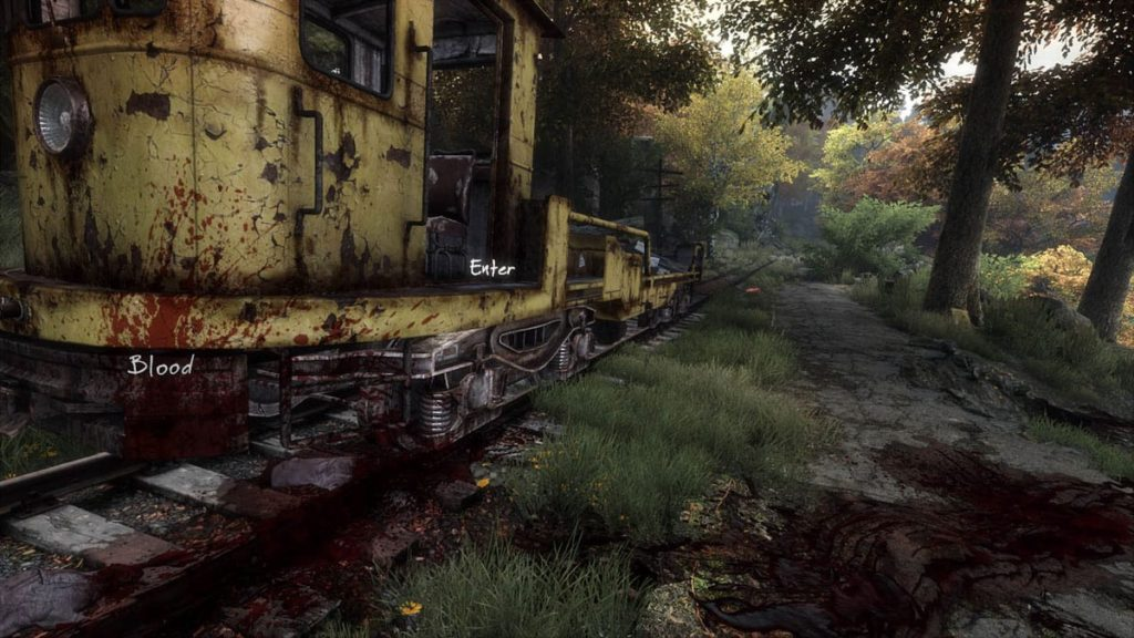 vanishing ethan carter 6