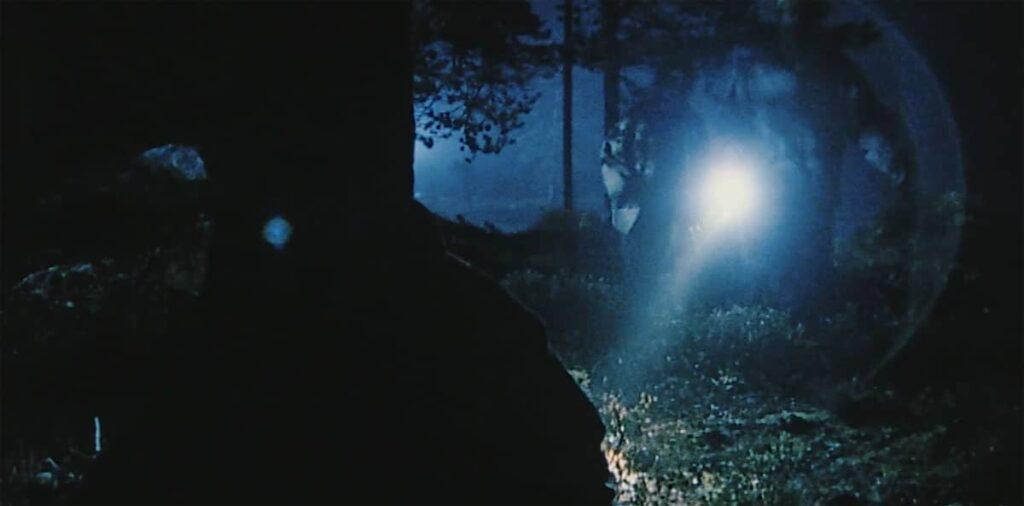 dark woods 2003