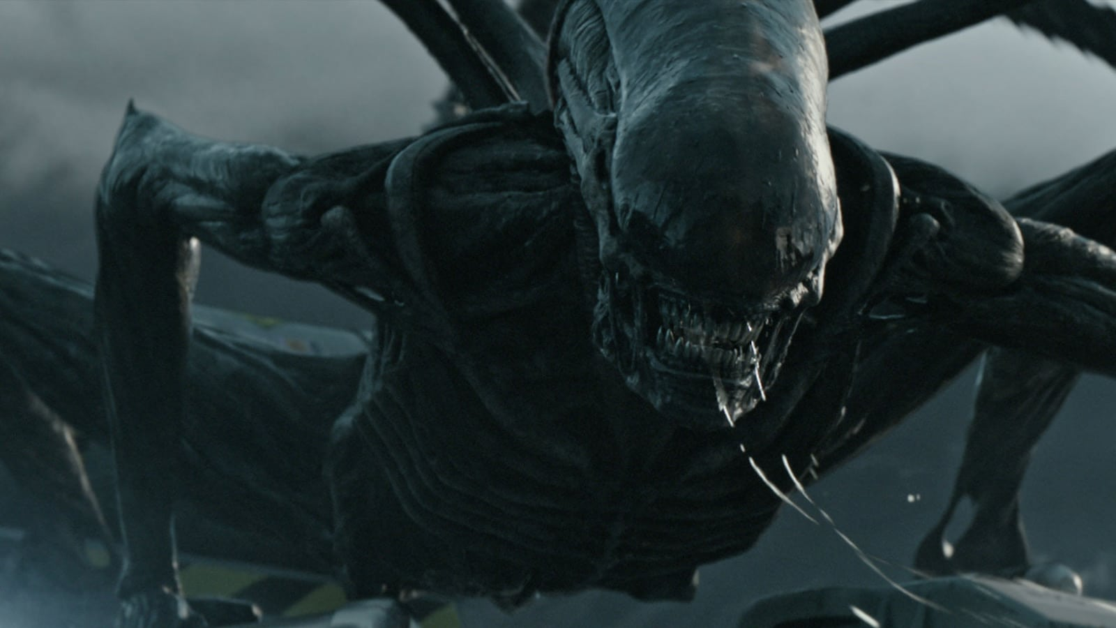 alien covenant new xenomorp